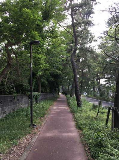 大磯宿_国道1号.jpg